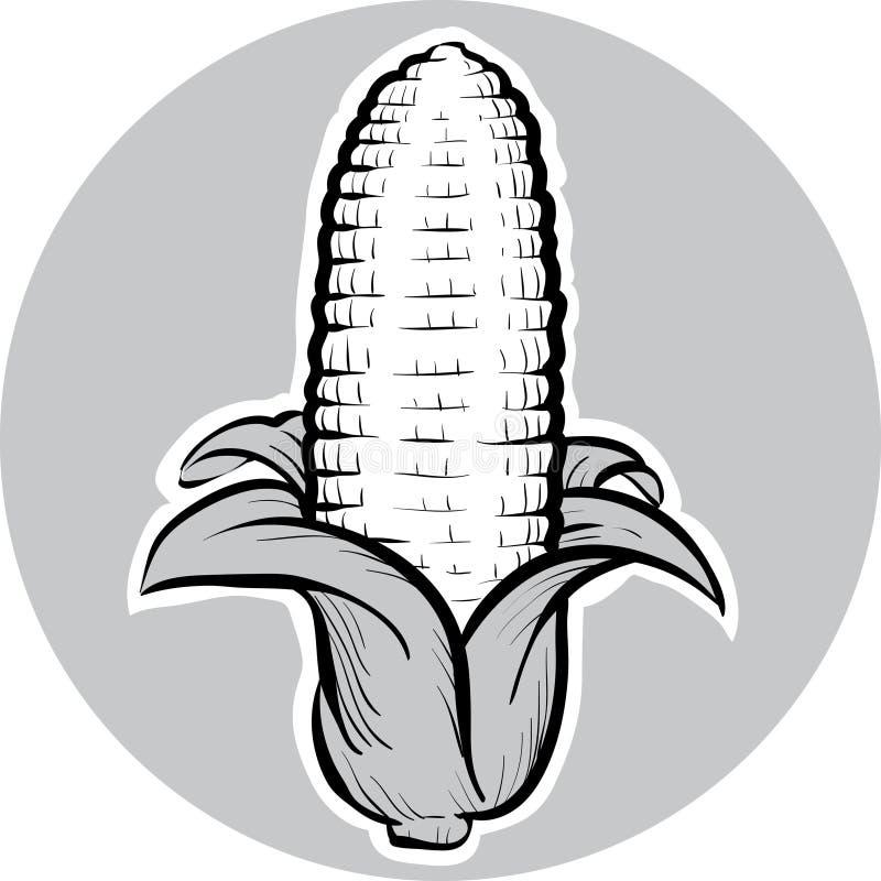 Σπάδικας καλαμποκιού απεικόνιση αποθεμάτων