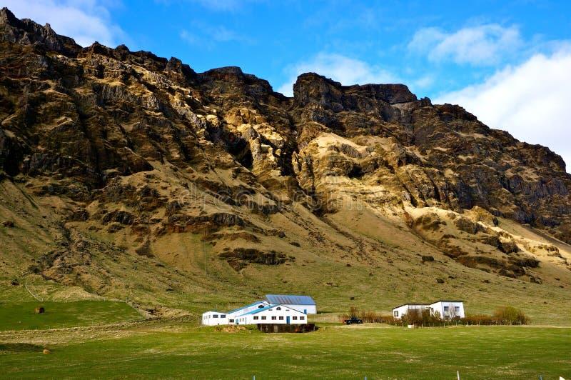 Σπίτια Ισλανδία στοκ εικόνες με δικαίωμα ελεύθερης χρήσης