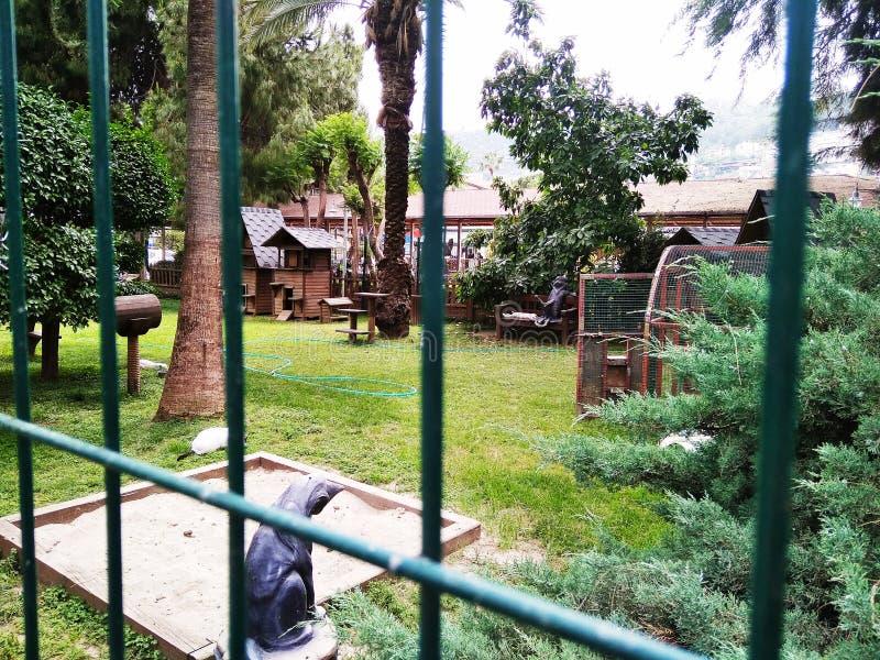 Σπίτι για γάτες στην Αλάνια της Τουρκίας στοκ φωτογραφία με δικαίωμα ελεύθερης χρήσης