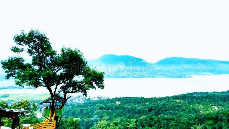 Σπίτι δέντρων με την πράσινη άποψη στοκ φωτογραφία με δικαίωμα ελεύθερης χρήσης