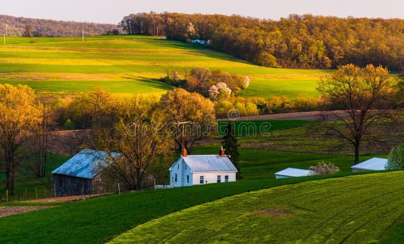 Σπίτι και σιταποθήκη στους αγροτικούς τομείς και τους κυλώντας λόφους της νότιας κομητείας της Υόρκης, PA. στοκ φωτογραφία