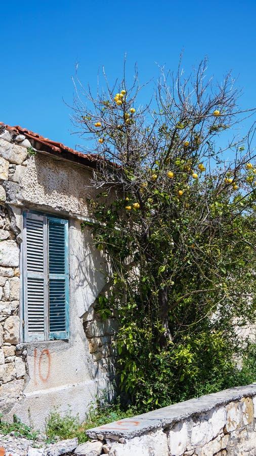 Σπίτι με την πέτρα Μπους πράσινη Κύπρος παραθύρων στοκ εικόνα με δικαίωμα ελεύθερης χρήσης