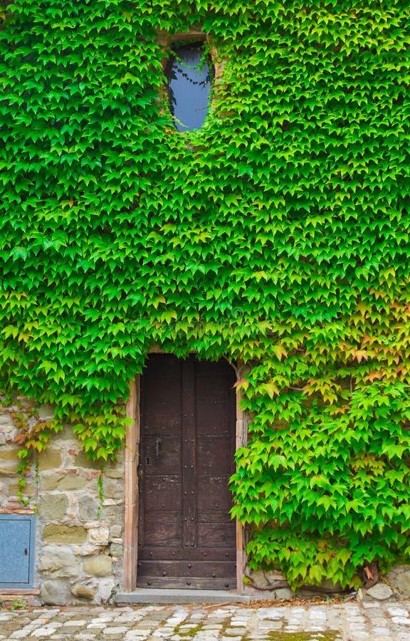 Σπίτι με τον κισσό στοκ φωτογραφία με δικαίωμα ελεύθερης χρήσης