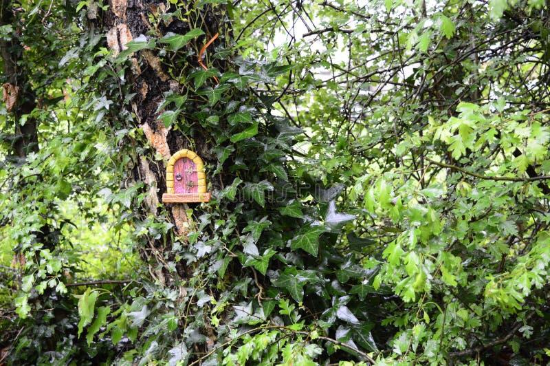 Σπίτι νεράιδων στο δέντρο στοκ φωτογραφίες