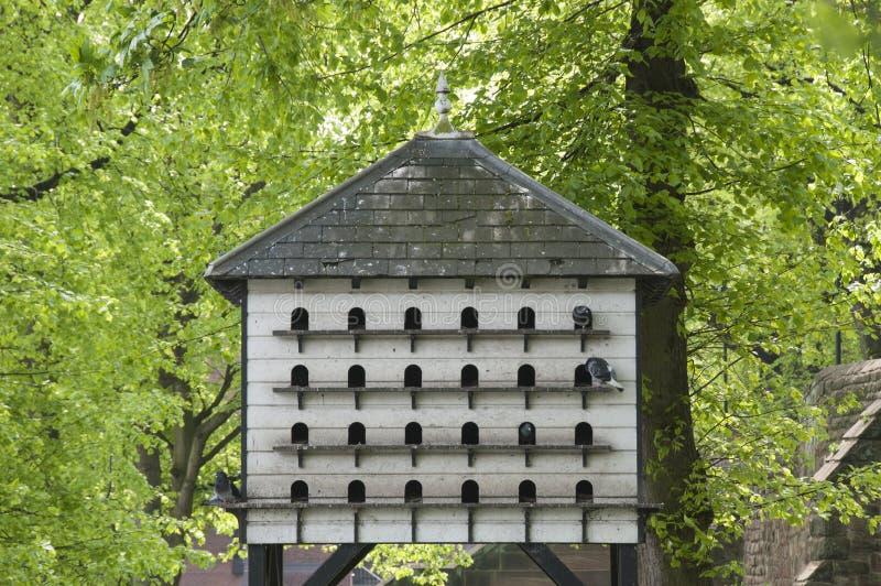 σπίτι πουλιών μεγάλο στοκ εικόνες