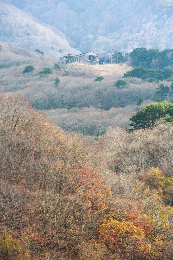 Σπίτι στο λόφο το φθινόπωρο στο χρυσό δρόμο γραμμών bandai-SAN - Bandai, Φουκουσίμα, Ιαπωνία στοκ εικόνες με δικαίωμα ελεύθερης χρήσης