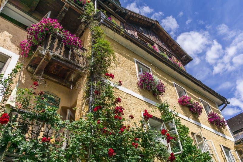 Σπίτι των τριαντάφυλλων στοκ εικόνα