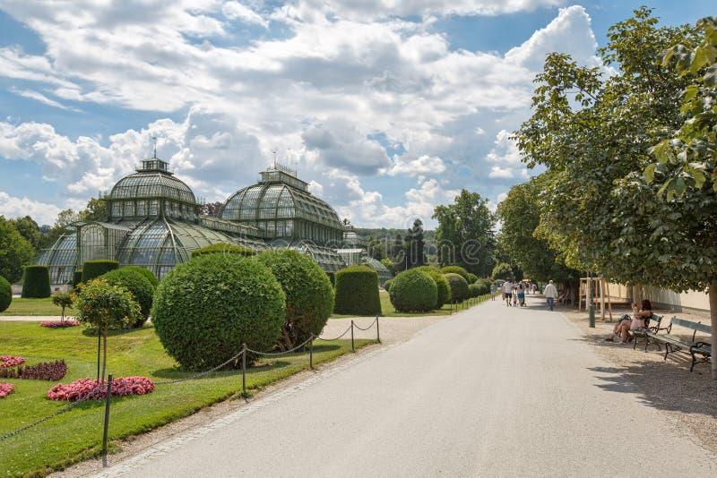 Σπίτι φοινικών στο πάρκο Schoenbrunn Αυστρία Βιέννη στοκ εικόνα με δικαίωμα ελεύθερης χρήσης