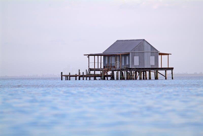 Σπίτι ψαριών στοκ εικόνες