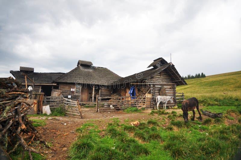 Σπίτι Shepard στοκ εικόνες