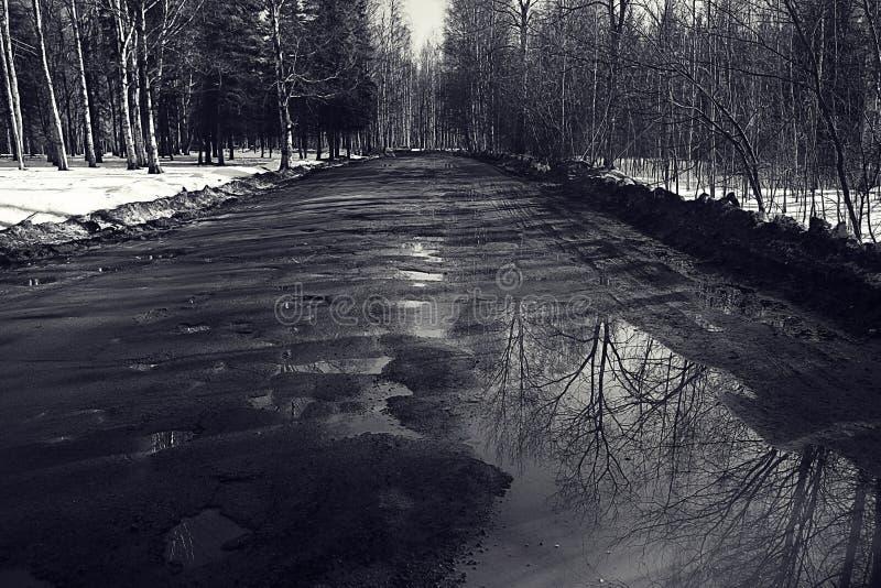 Σπασμένος άνοιξη δρόμος στοκ εικόνα
