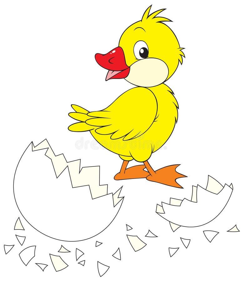 σπασμένο αυγό νεοσσών διανυσματική απεικόνιση