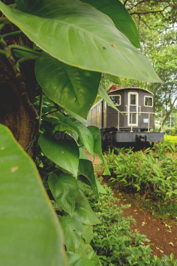 σπασμένο και πεταγμένο τραίνο στοκ εικόνα με δικαίωμα ελεύθερης χρήσης