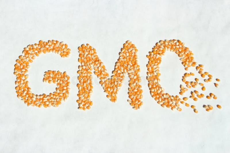 Σπασμένο καλαμπόκι Word ΓΤΟ στοκ εικόνα
