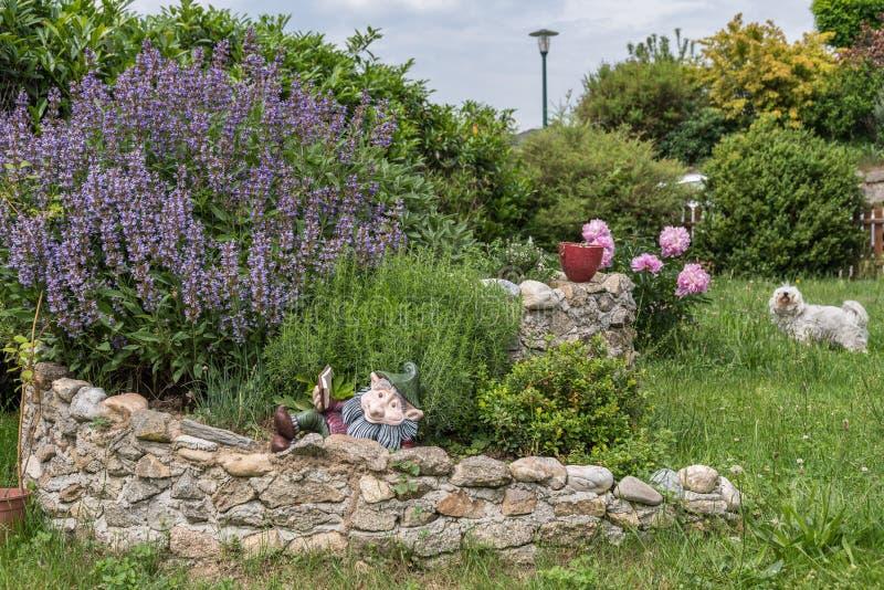 Σπείρα χορταριών στο ζωηρόχρωμο κήπο στοκ φωτογραφίες
