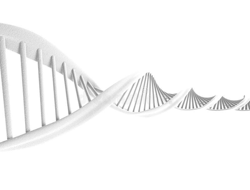 Σπείρα DNA ελεύθερη απεικόνιση δικαιώματος