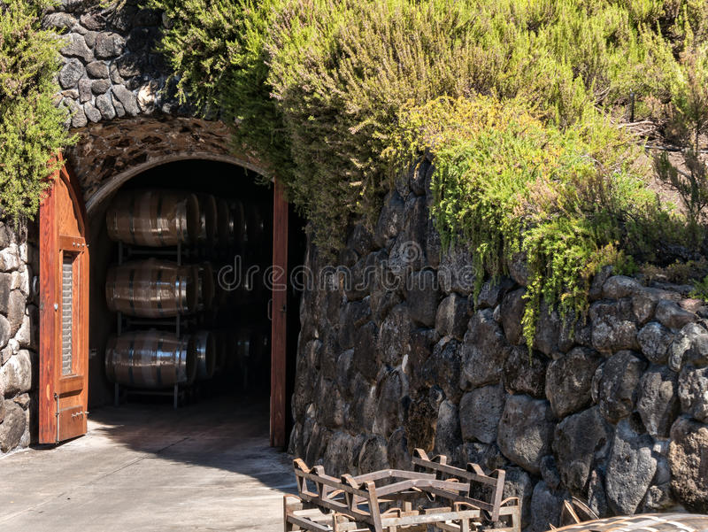 Σπηλιά κρασιού στοκ εικόνες
