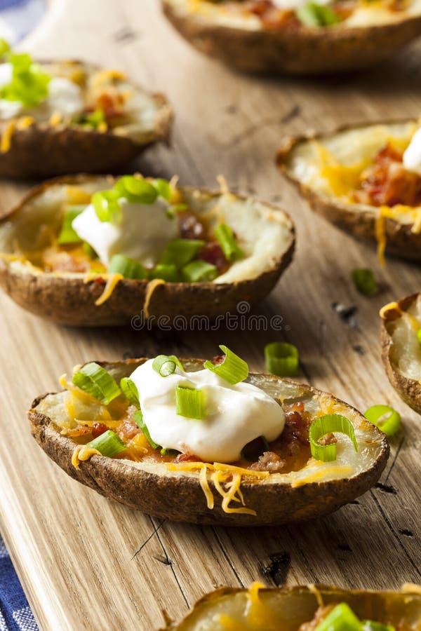 Σπιτικά δέρματα πατατών με το μπέϊκον στοκ εικόνες