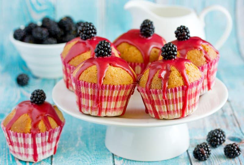 Σπιτικά muffins με το πάγωμα βατόμουρων στοκ φωτογραφίες