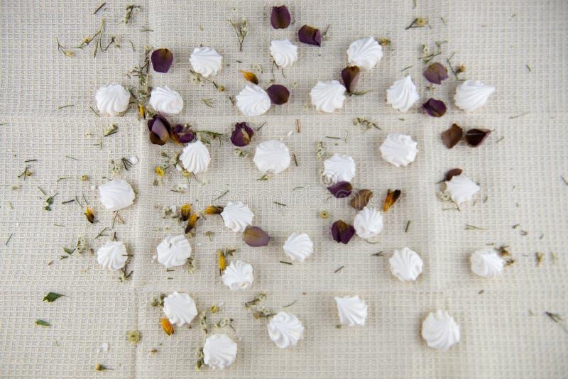 Σπιτική διακοσμημένη μαρέγκα στοκ φωτογραφία με δικαίωμα ελεύθερης χρήσης