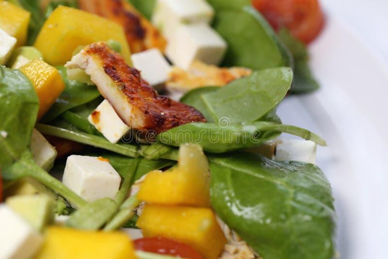 Σπιτική σαλάτα με το κοτόπουλο φέτα, ντομάτες και Veggies στοκ εικόνες με δικαίωμα ελεύθερης χρήσης