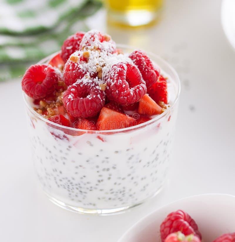 Σπιτική φρέσκια πουτίγκα chia με το γιαούρτι, τη φράουλα, το σμέουρο, τα καρύδια και την καρύδα σε ένα γυαλί στοκ εικόνα με δικαίωμα ελεύθερης χρήσης