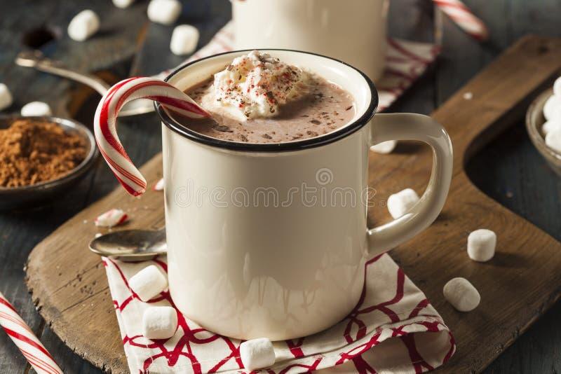 Σπιτική Peppermint καυτή σοκολάτα στοκ φωτογραφίες