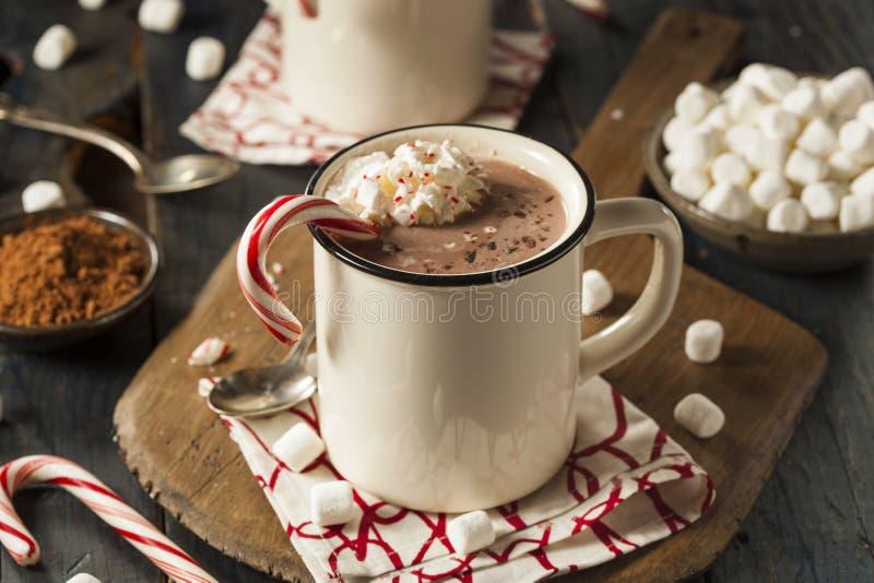 Σπιτική Peppermint καυτή σοκολάτα στοκ εικόνα