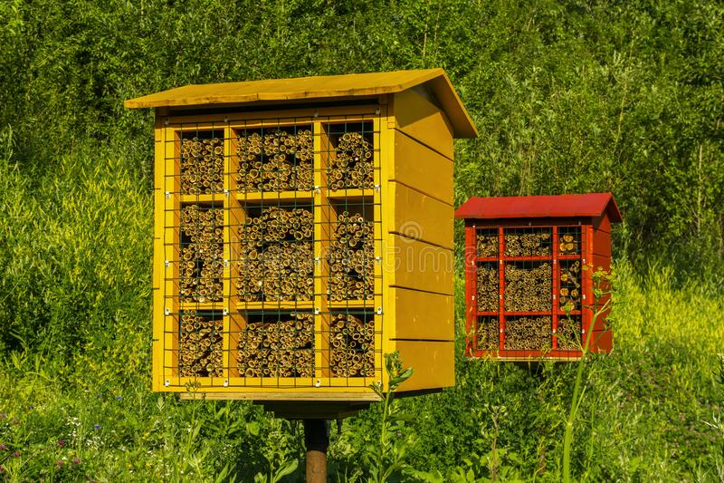 Σπιτικοί φραγμοί φωλιών για τις μέλισσες κτιστών για τη γονιμοποίηση των εγκαταστάσεων στοκ εικόνα με δικαίωμα ελεύθερης χρήσης