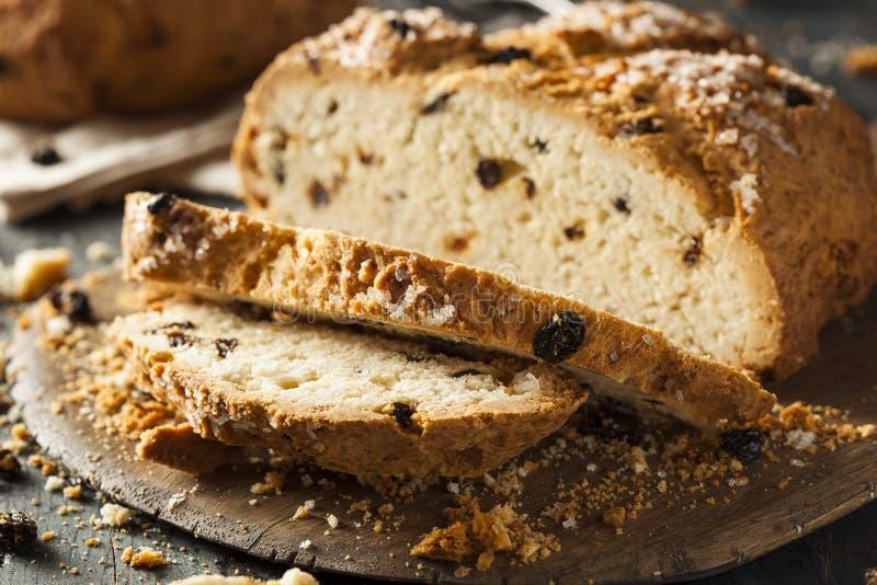 Σπιτικό ιρλανδικό ψωμί σόδας στοκ εικόνες