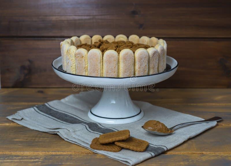 Σπιτικό κέικ tiramisu, παραδοσιακό ιταλικό επιδόρπιο στοκ φωτογραφία με δικαίωμα ελεύθερης χρήσης