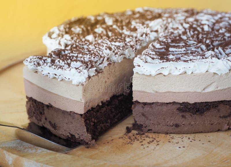 Σπιτικό κέικ Tiramisu στοκ εικόνες