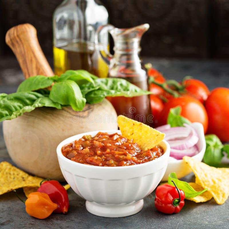 Σπιτικό πικάντικο salsa ντοματών με τα λαχανικά και το ελαιόλαδο στοκ φωτογραφία με δικαίωμα ελεύθερης χρήσης