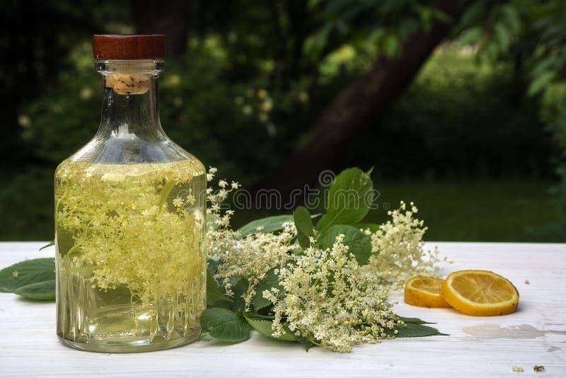 Σπιτικό σιρόπι elderflower σε ένα μπουκάλι γυαλιού, elderflower umbel στοκ εικόνα με δικαίωμα ελεύθερης χρήσης