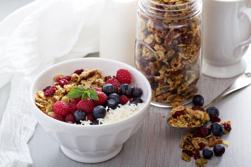 Σπιτικό granola με τα μούρα στοκ εικόνα με δικαίωμα ελεύθερης χρήσης