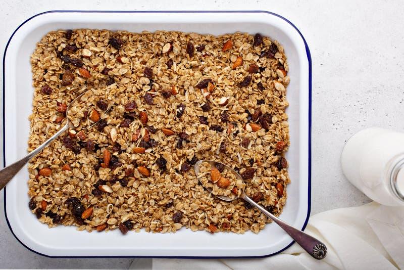 Σπιτικό granola με την καρύδα και τα αμύγδαλα στοκ εικόνες με δικαίωμα ελεύθερης χρήσης