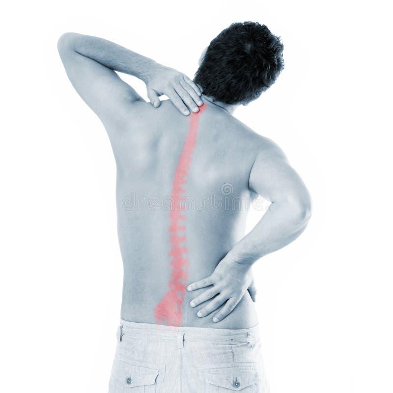 σπονδυλική στήλη προβλη&mu στοκ εικόνα