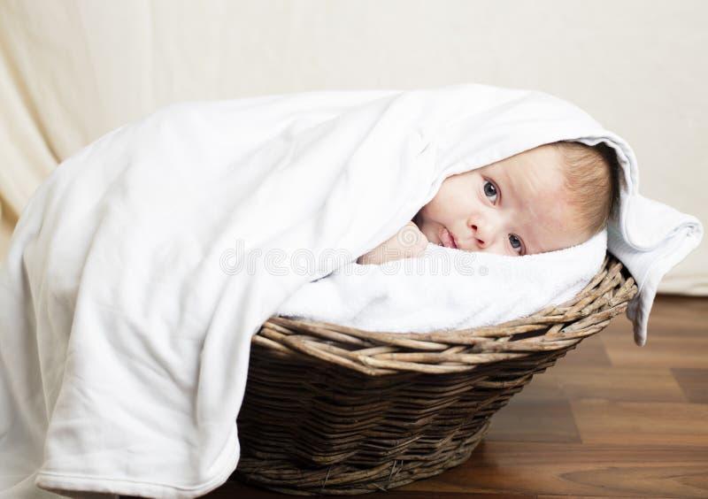 σπορείο μωρών μικρό στοκ φωτογραφίες με δικαίωμα ελεύθερης χρήσης