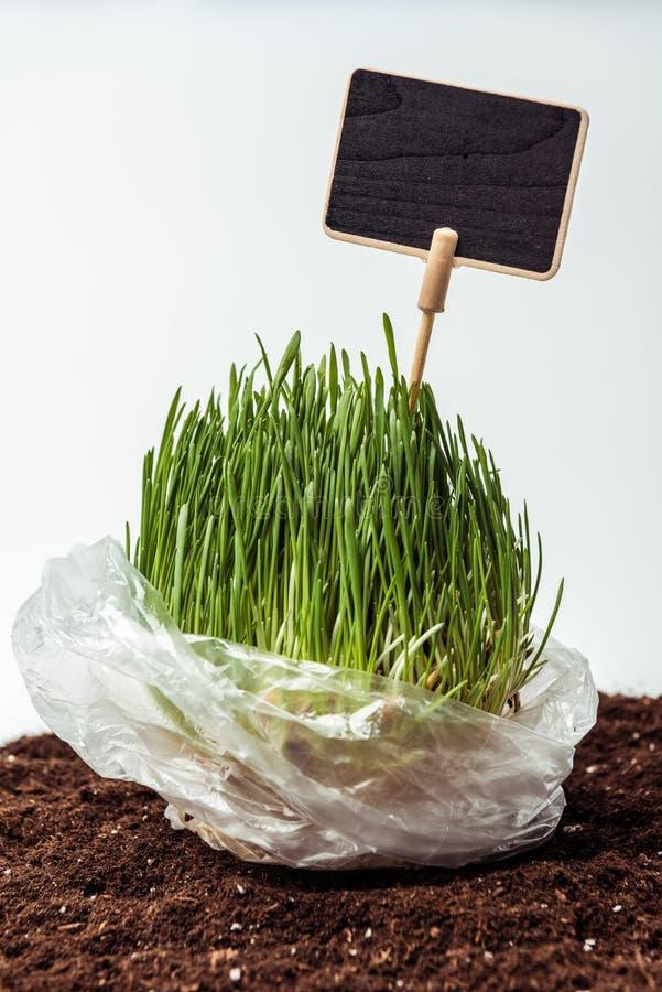 σπορόφυτο με τον πίνακα στη πλαστική τσάντα στο χώμα διανυσματική απεικόνιση