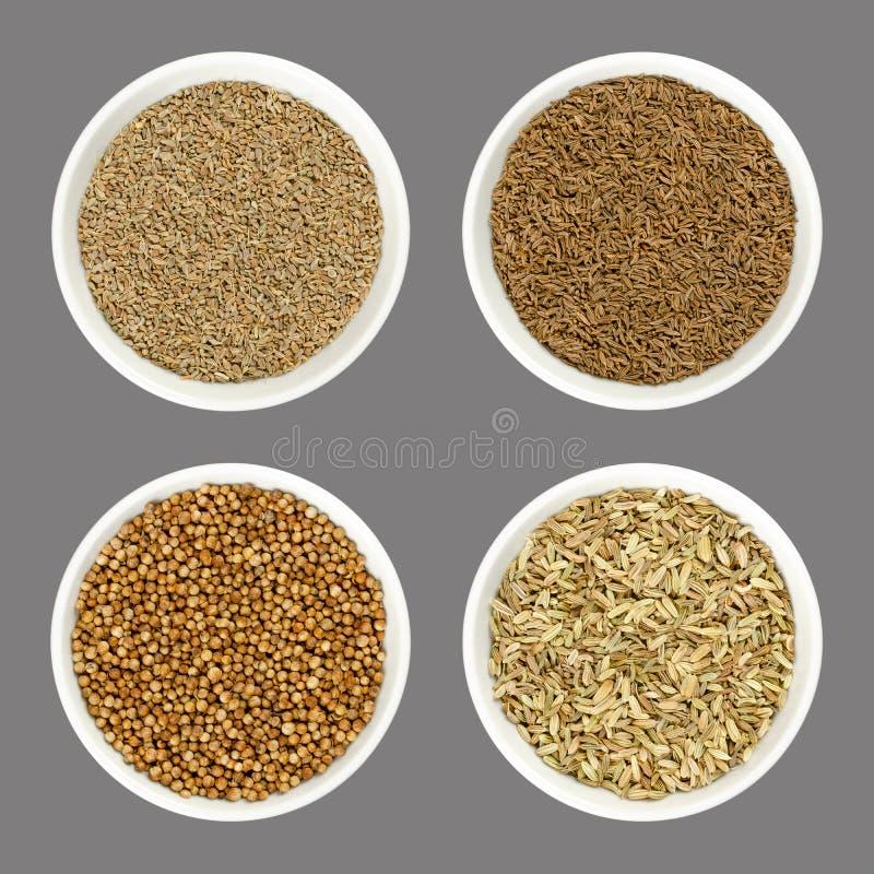 Σπόροι γλυκάνισου, του κυμινοειδούς κάρου, κορίανδρου και μαράθου στα άσπρα κύπελλα πέρα από γκρίζο στοκ φωτογραφία