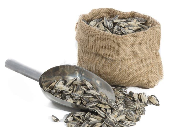 Download Σπόροι ηλίανθων με τη μέτρηση της σέσουλας Στοκ Εικόνα - εικόνα από βιομηχανία, γεύμα: 62721771