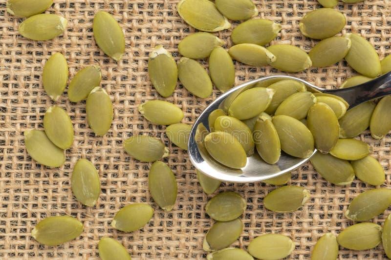 Σπόροι κολοκύθας ή σπόροι σε ένα κουτάλι επιδορπίων στοκ εικόνες με δικαίωμα ελεύθερης χρήσης