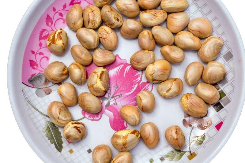 Σπόροι φρούτων του Jack σε ένα πιάτο που απομονώνεται στο άσπρο υπόβαθρο στοκ φωτογραφίες