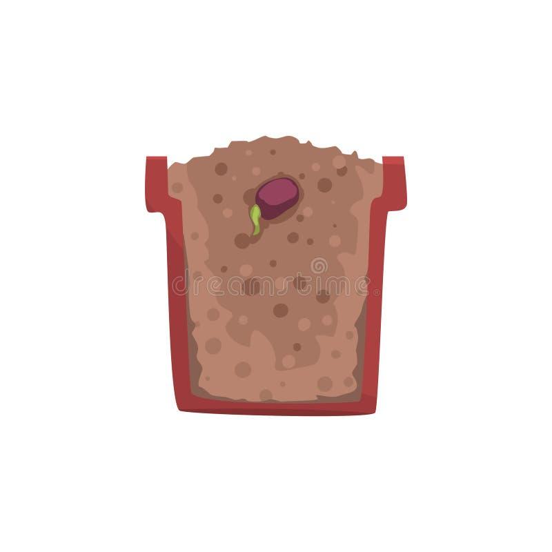 Σπόρος ενός φασολιού που βλασταίνει σε ένα δοχείο με το επίγειο χώμα, στάδιο της αύξησης, δοχείο σε μια διανυσματική απεικόνιση δ απεικόνιση αποθεμάτων
