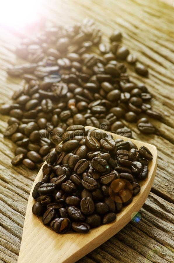 Σπόρος καφέ στο ξύλινο κουτάλι στοκ εικόνες