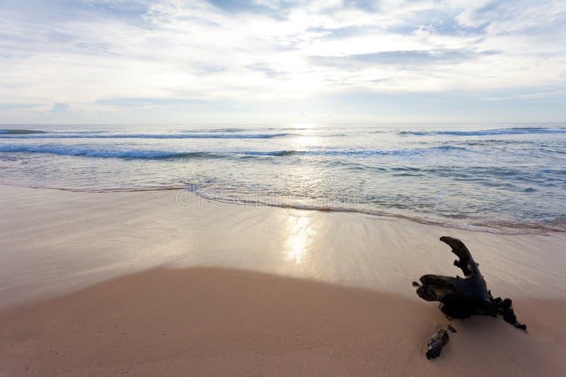 Σρι Λάνκα - Ahungalla - όπου η φύση είναι ακόμα καλή και ηρεμώντας στοκ εικόνες