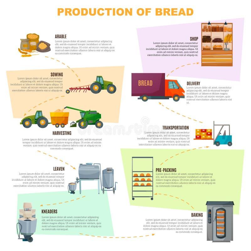 Στάδια Infographics παραγωγής ψωμιού απεικόνιση αποθεμάτων