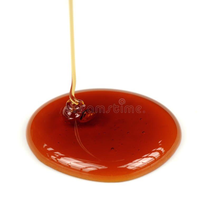 Στάζοντας μέλι στο άσπρο υπόβαθρο στοκ εικόνα με δικαίωμα ελεύθερης χρήσης