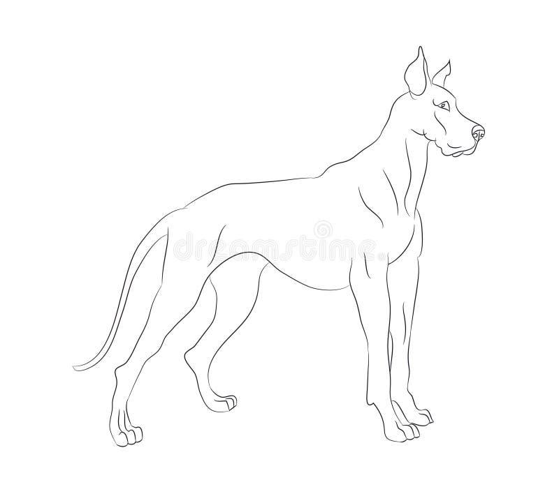Στάσεις σκυλιών, γραμμές, διάνυσμα απεικόνιση αποθεμάτων