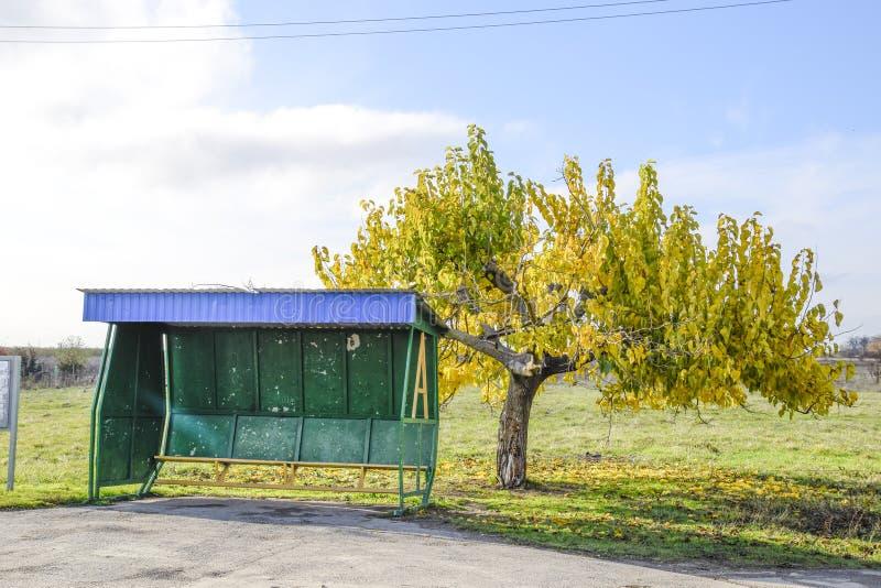 Στάση λεωφορείου στο χωριό Το πώμα δίπλα στο δέντρο στοκ εικόνες